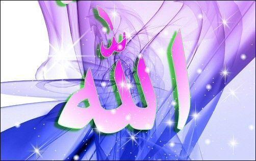 Partagez vos citations et vos hadiths du jour !